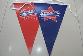 Flag Cloth banner 1.8m (6 feet) పర్యావరణ ద్రావణి ప్రింటర్ WER-ES1801 2 చే ముద్రించబడింది